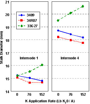Influence of potassium application rate on the stalk diameter of three corn hybrids.