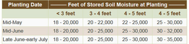 Adjusting sorghum planting rate to available stored soil moisture in arid environments.