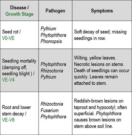 This table includes soybean disease names and sypmtoms.