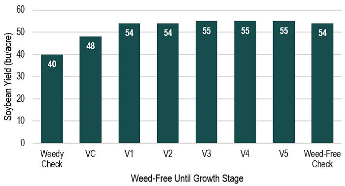 Chart showing soybean yield associated with maintenance of weed-free conditions through a range of soybean growth stages.
