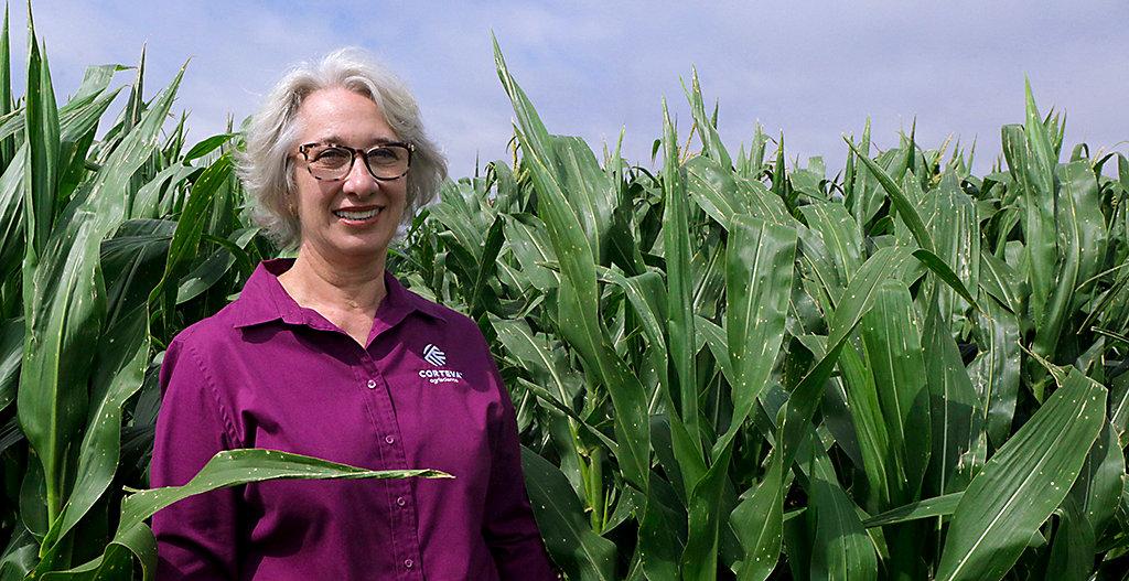 Photo of Corteva senior research scientist Ana Locatelli standing in a corn field. Photo taken at Cortevaâ  s research center in Passo Fundo, Brazil.