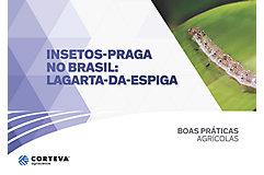 Insetos praga no Brasil: Lagarta-da-espiga
