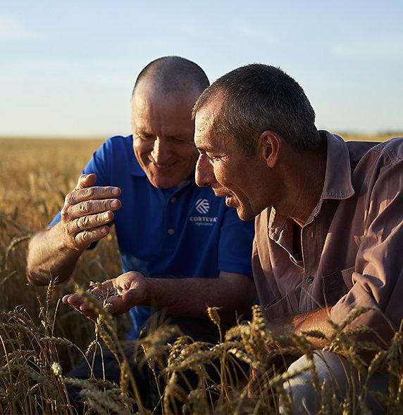 Corteva_Rep_and_Farmer_in_Wheat_Field