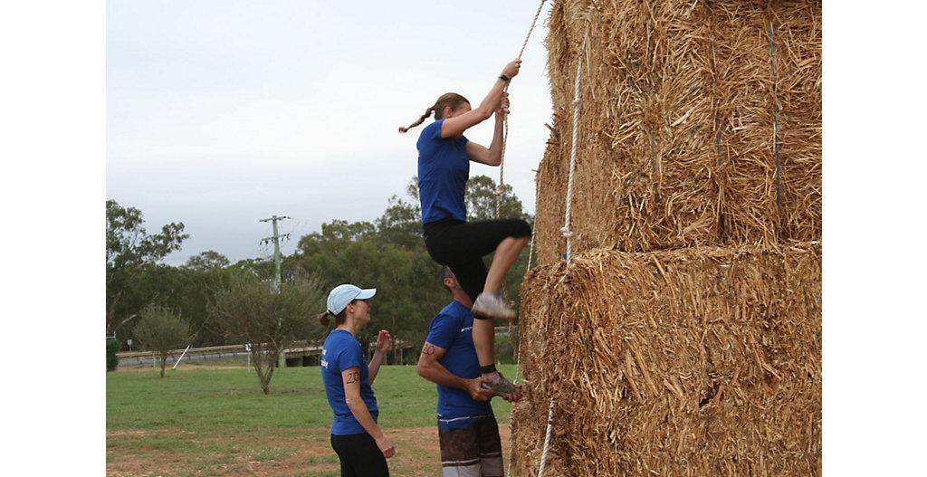 Hay Climb
