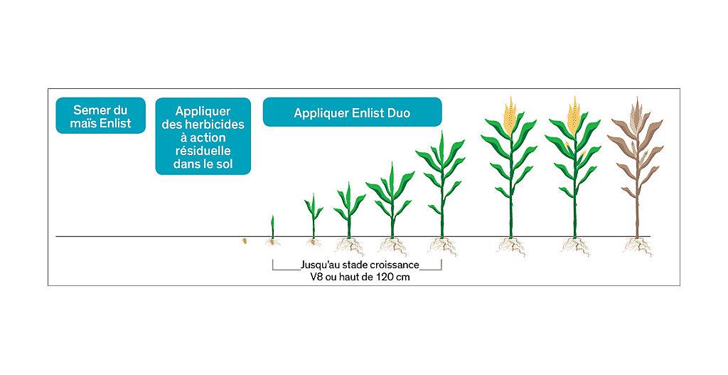 L'application de l'herbicideEnlistDuo
