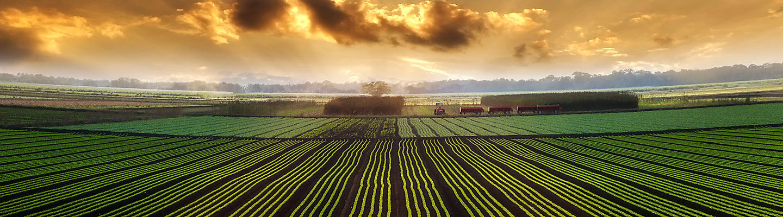 Imagen Desktop Proteccion de cultivos