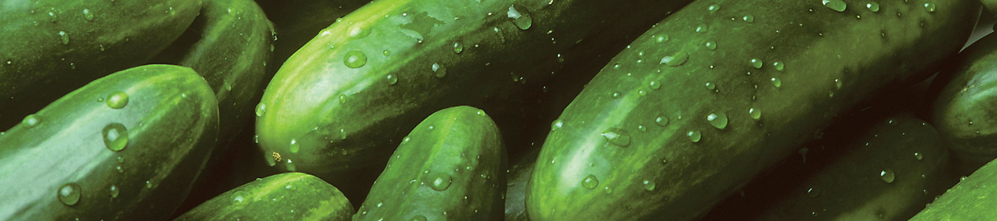 Image of cucumbers with water droplets on them.
