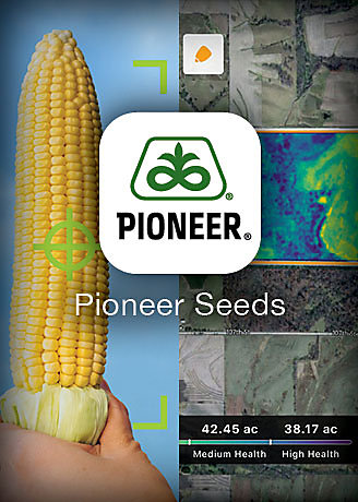 Download Pioneer Seeds App