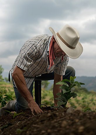 A farmer kneels on the ground in a field, planting a crop with a shovel next to him.