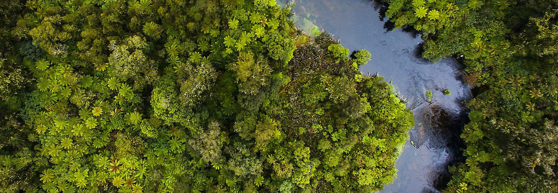 Aerial shot of river