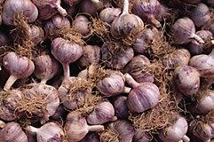 Pile of garlic