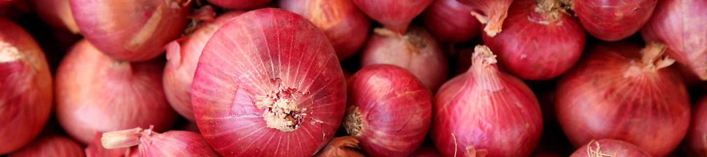 Pile of red onions