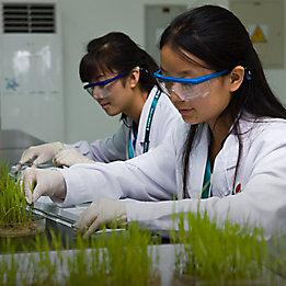 Лабораторни изследователи с растения