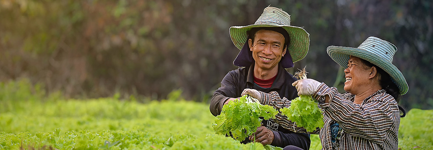 Two farmers holding lettuce