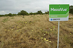 Image of MezaVue field sign
