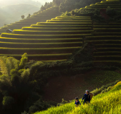 Mother Daughter on Rice Terraces