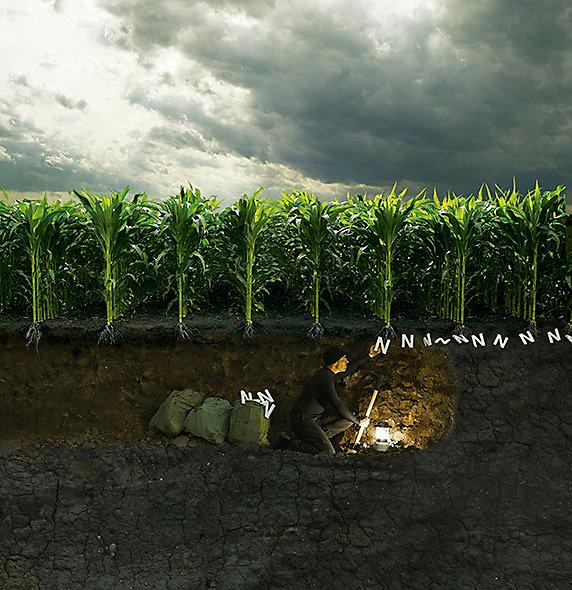 Hombre bajo tierra sembrando