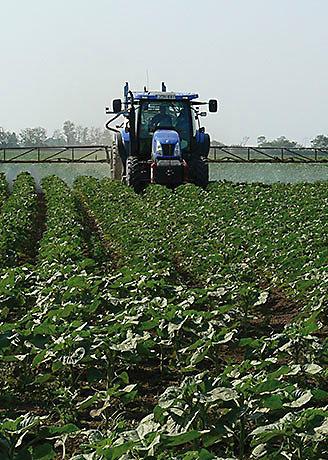 Trator de rega campo semeado
