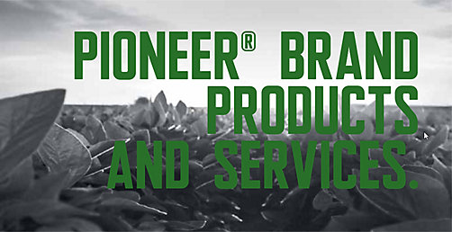 Pioneer Brand Products and Services