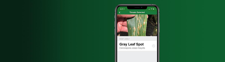 Seeds App - Hero