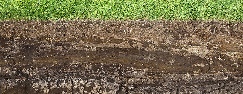 Soil Cross Cut