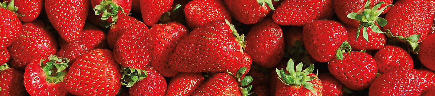 Image of picked strawberries
