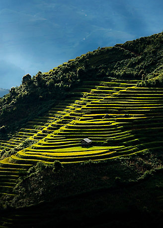 Padang teres dengan sunalang
