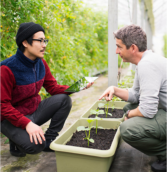 Men analyze plants with tablet