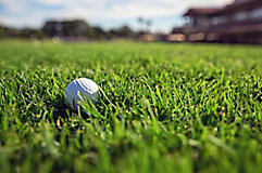 Image of golf ball in golf course rough