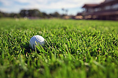 Image of golf ball on green