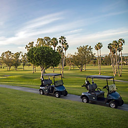 Image of golf carts on golf course path