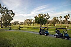Image of golf carts on path