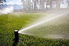 Image of irrigation sprinkler