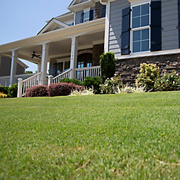 Image of residential home with landscaping
