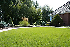 Image of residential home and lawn