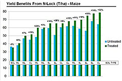 Benefits of using N-Lock in Maize