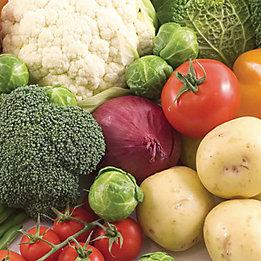 Vegetables Banner Mobile