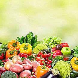 Success Neo Vegetables