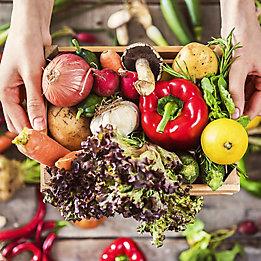 Transform Vegetables