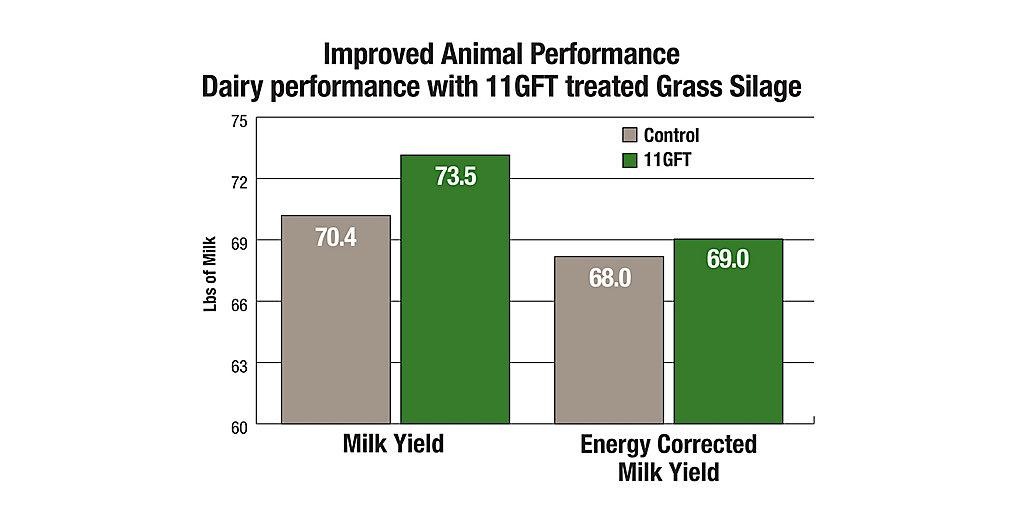 11GFT Improve Animal Performance Chart