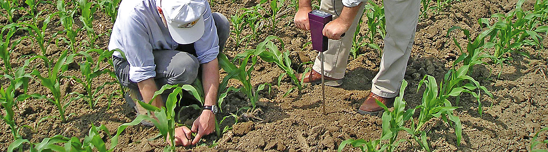 Servizi Agronomici, tecnici