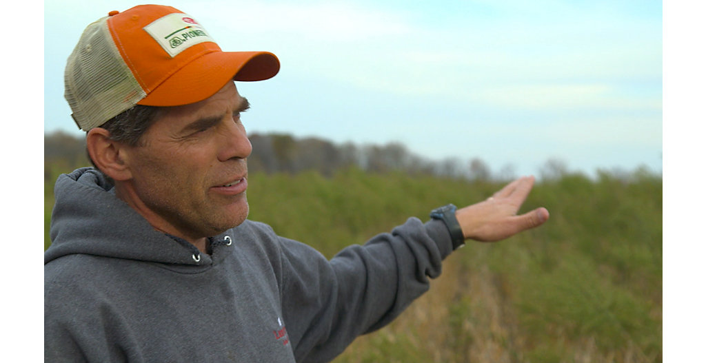 Video of Don Lamb discussing fall burndown herbicide applications