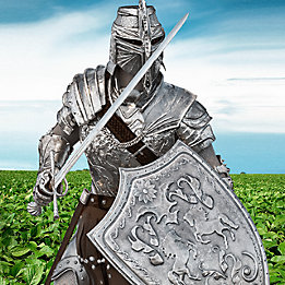 Knight in soybean field