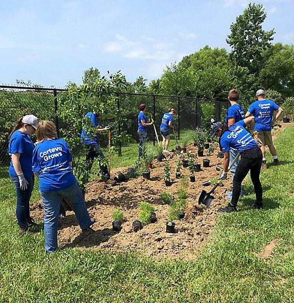 Volunteers with Corteva™ Grows working in a garden