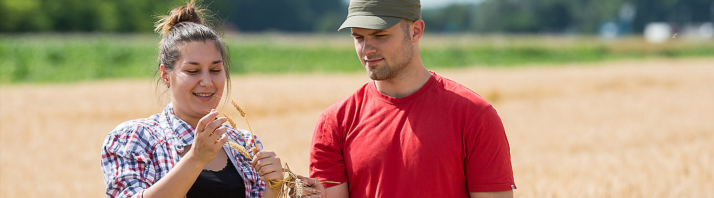 Przedstawiciele handlowi do kontaktów z gospodarstwami rolnymi