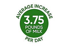 Average Increase per Day icon