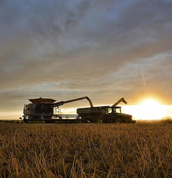 IMG_combine-grain-cart-at-sunset-1_beauty_097-1