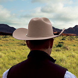 Rancher inspecting his land