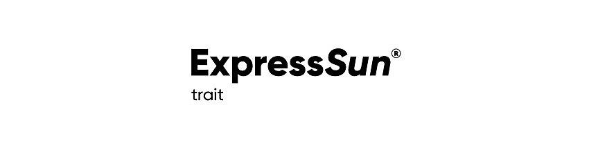 IMG_expresssun