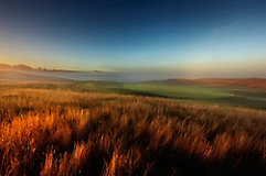 Image of a golf course rough and fairway with fog at sunrise